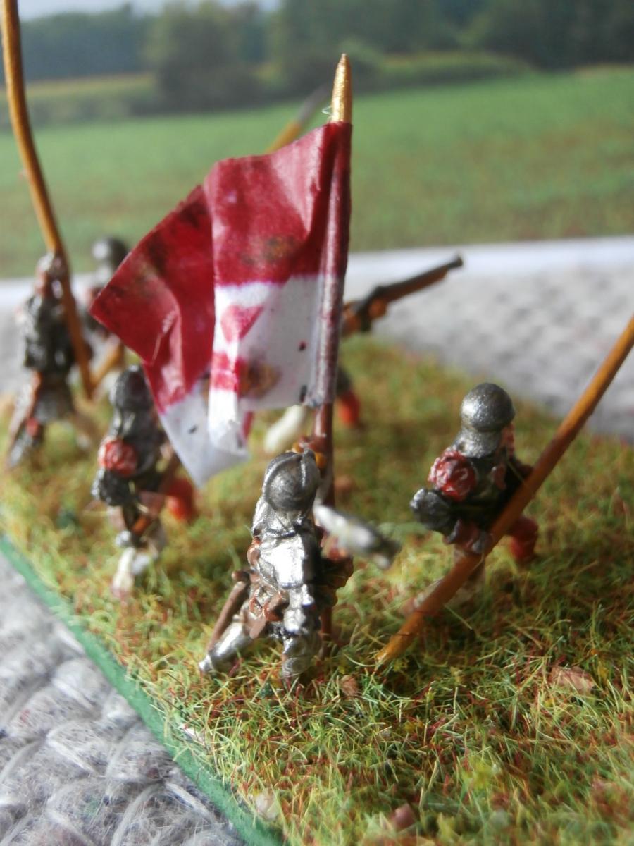 Miniature con Bandiere colleonesche