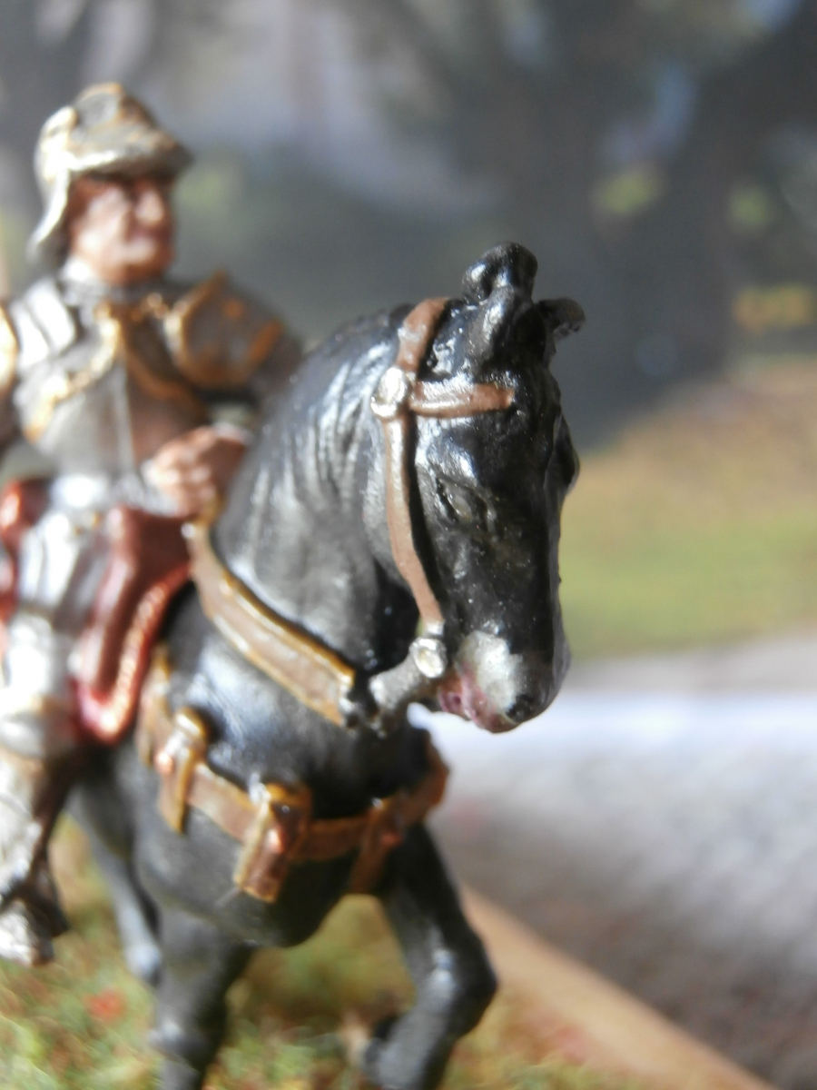 Cavallo del Colleoni